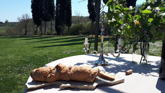 Farnetella, Italia: View of the garden