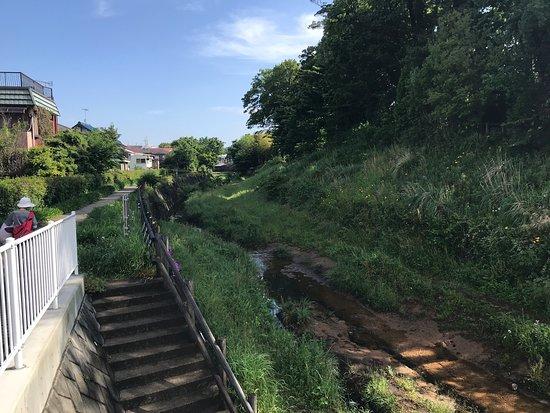 Futatsubashi Park