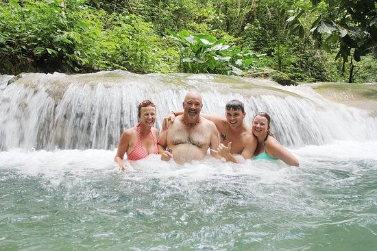 Private Full-Day Tour in Mayfield Falls...