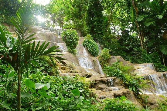 Konoko Falls and Park Private Tour with...