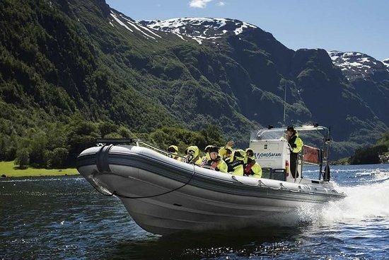 Guided day tour to Flåm - Rallarvegen...