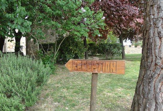 Castiglione della Valle, Italia: Ingresso Reception