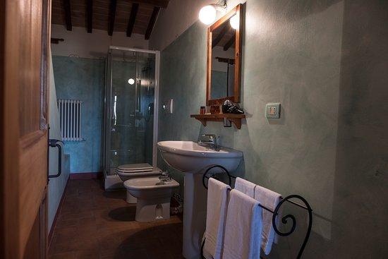 Castiglione della Valle, Italia: bagno appartamento superior