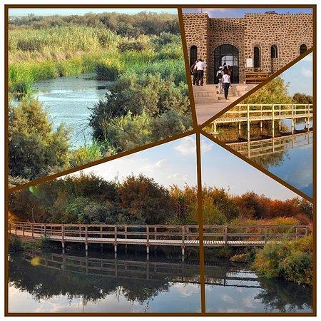 Azraq, Jordanie: Азрак. Заповедный оазис
