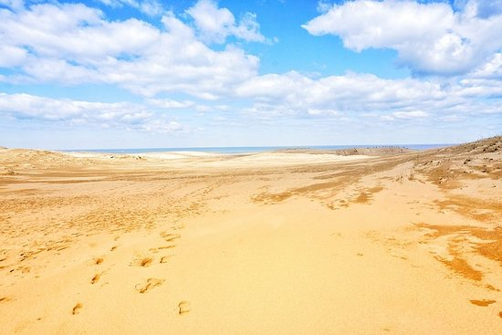 From Osaka: Tottori Sand Dunes 1-Day...