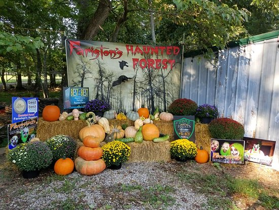 Fariston's Haunted Forest