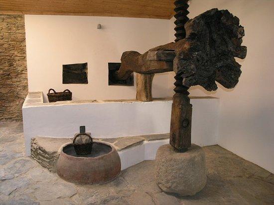 Museu Domigos da Vinha