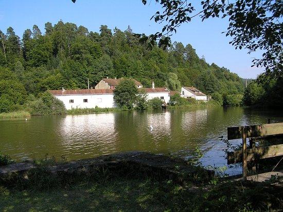 Le gîte à Forge Neuve, près d'un plan d'eau, au milieu de la verdure