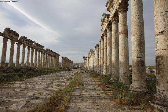Siria - Apamea - Il Cardo