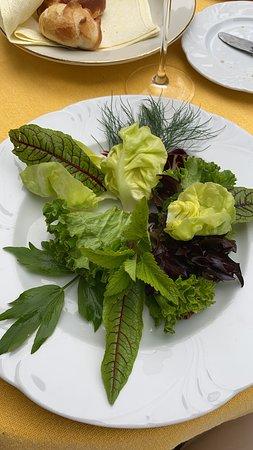 Altnau, Schweiz: Der legendäre Kräutersalat