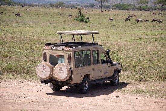 Guruguru Safaris