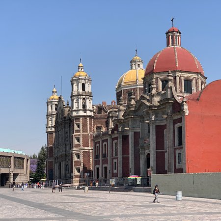 Mexico City is so huge that we couldn't see everything. We hired a private driver guide that drove us for 2 days, we walked many miles up and down but time wasn't enough.