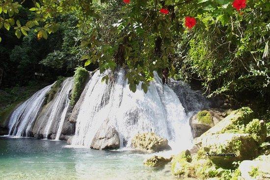 Reach Falls and Blue Lagoon Private Tour