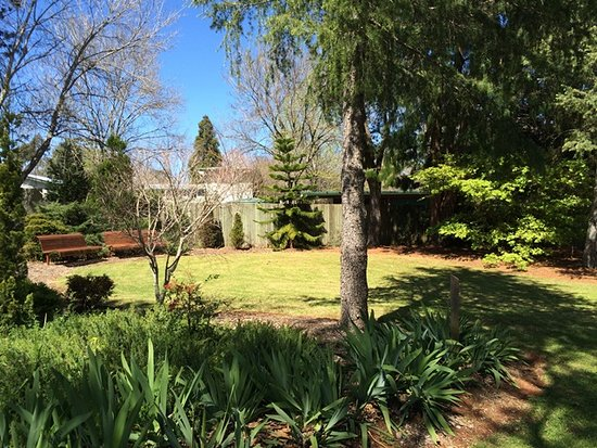 Davidson Arboretum (Tree Garden)