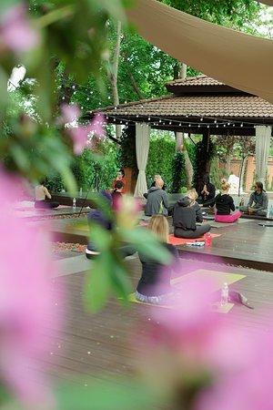 Наслаждение. Райский уголок в самом центре Одессы. Йога-клуб Махарадж и ресторан авторской вегетарианской кухни.
