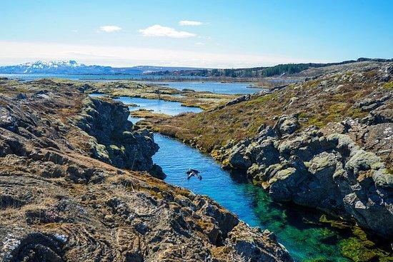 Tagesausflug von Reykjavik in einer...