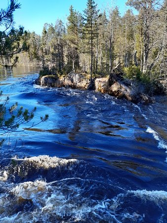 Oulanka National Park – fotografija