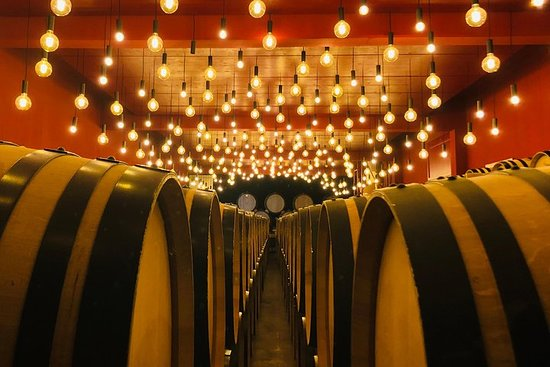 Vin en Vélo - visite viticole et culturelle du Valais à vélo...