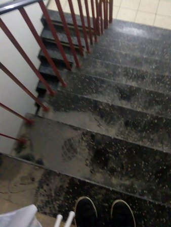 Stairs not cleaned for decades
