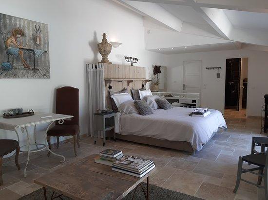 Gard, France: Grande chambre lumineuse de 45 m² avec coin salon, coin repas et salle de bain confortable.