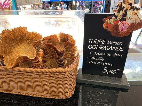 Nouveau tulipe maison garni !!