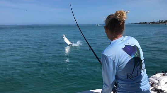 Captain Van Hubbard Fishing Charters (Englewood) - 2020 ...