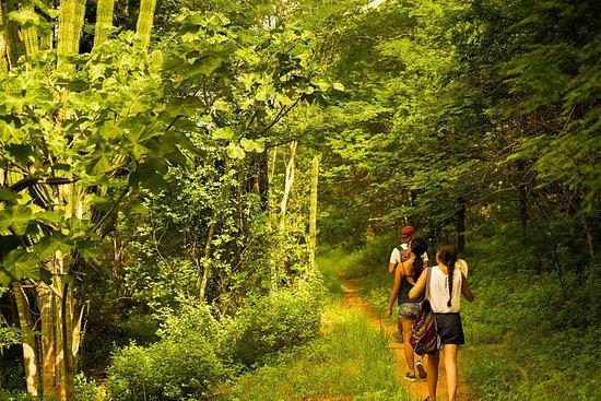Randonnée sur le sentier des agaves...