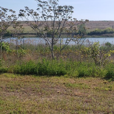 Shirley Chisholm State Park