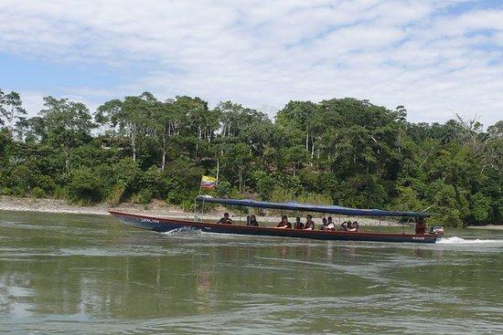 Andes y Amazonas, la Ruta del Triángulo 5 Días / 4 Noches (Viaje...
