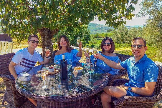 Passeio Privado do Vale do Douro: Visite três Vinícolas com...