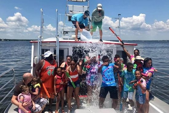 Big Fun Dolphin Tours & SeaLife...