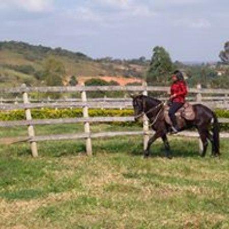 Para os iniciantes locais próprios para montaria, proporcionando maior segurança e contato com o animal sem riscos.