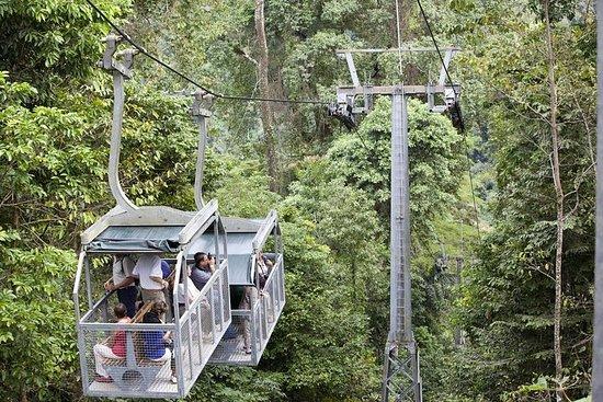 Bonde aéreo Veragua Rainforest