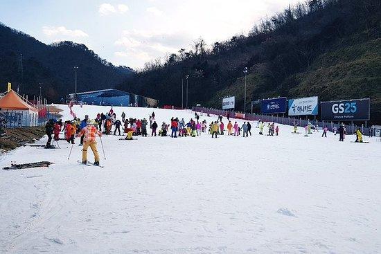 Nami Island + Ski Tour