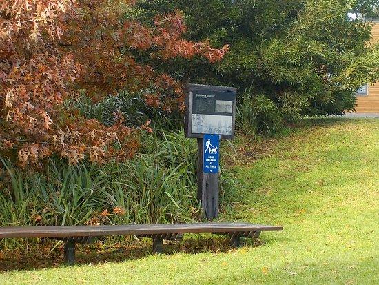 Gillbrook Reserve