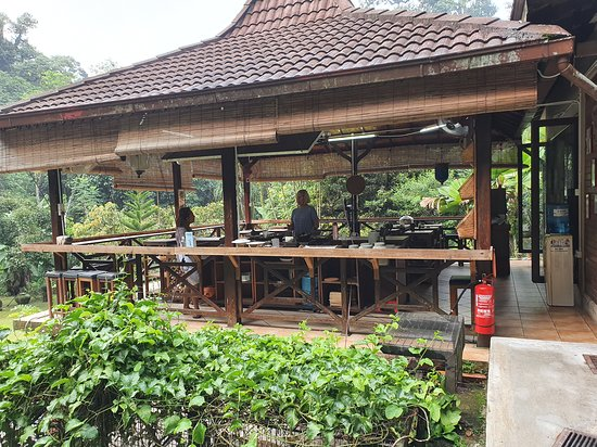 Malaysian Cooking Classes 사진