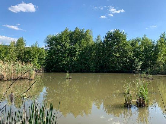 Lac de la Gravière