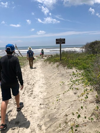 The end of the beach trail and the beginning of our relaxing day looking for shells and seeing boneyard beach.