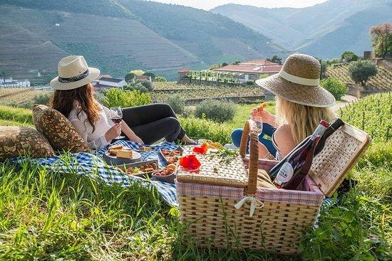 WINE SAFARI in Douro Valley w/picnic...