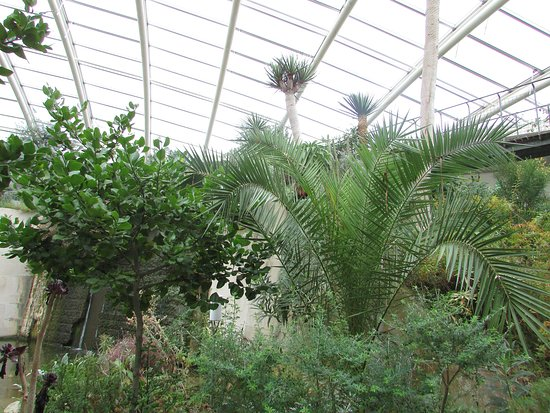Syd-Wales, UK: inside the nat botanical gardens wales