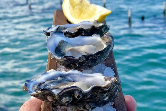Coffin Bay Oysters, Ocean & Nature Tour