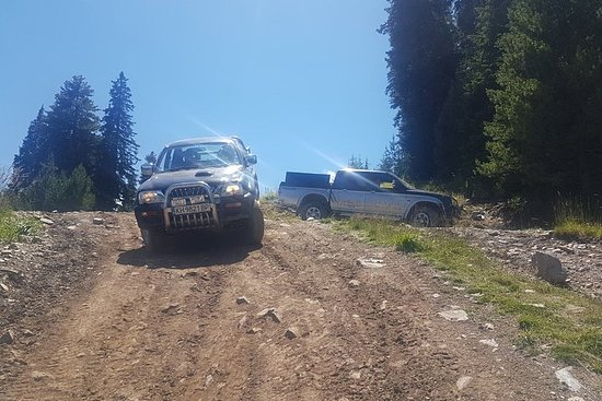 Ypperlig Jeep Safari Obzor