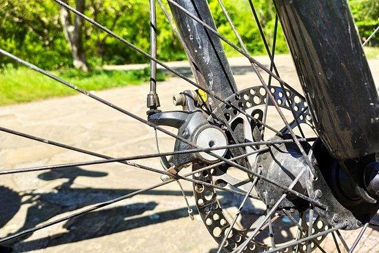 Privat heldags sykkeltur i Rhodope-fjellene fra Plovdiv