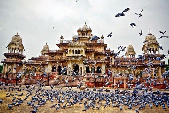 Rajasthan Pari Tours