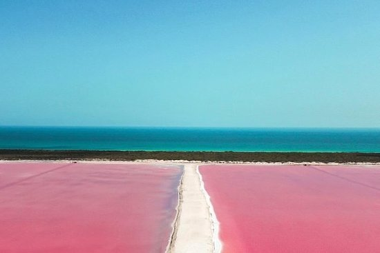Tour Las Coloradas From Cancun