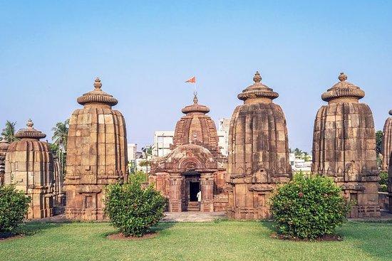 Bhubaneshwar to Kolkata via Mangroves Forest & Tiger Reserve