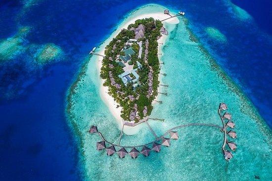 Maafushi: Tagesausflug zum Adaaran...