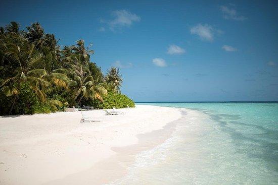 Maafushi: Tagesausflug zum...