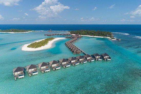 Maafushi: Tagesausflug zum Anantara...