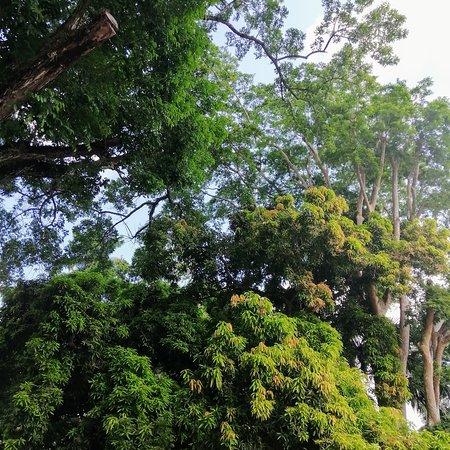 Veraguas Province照片